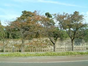 fukushima+046_convert_20101019180835.jpg