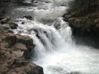 Lower Falls, 1 web, 5-7-11 002