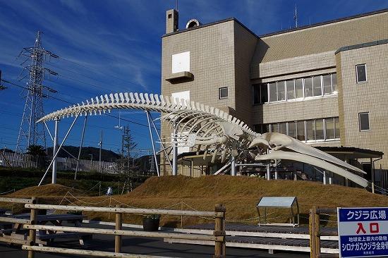 道の駅 和田浦wa・o! 2