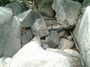 cairns2012-3+034_convert_20120216041406.jpg