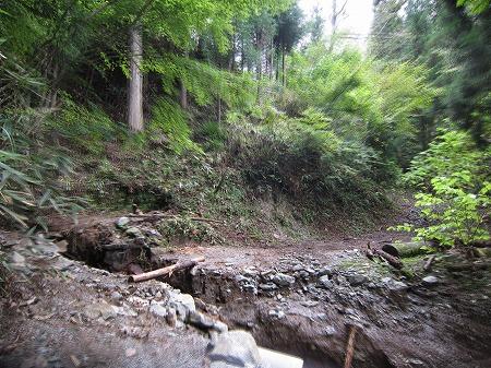 林道越路線 5