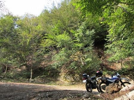林道盛里線 4