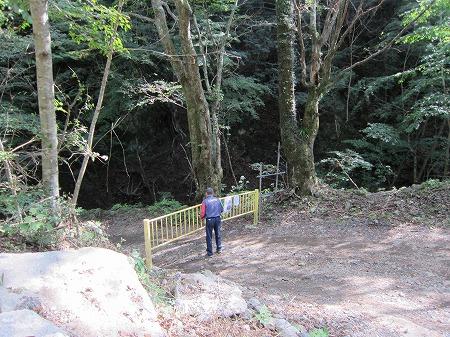 林道盛里線 5