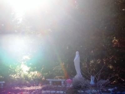 web 2013-03-11 Peace garden 013