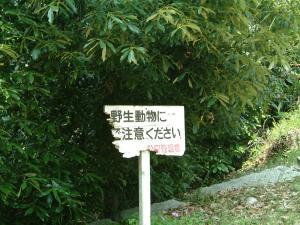 matsuyama+048_convert_20120530232710.jpg