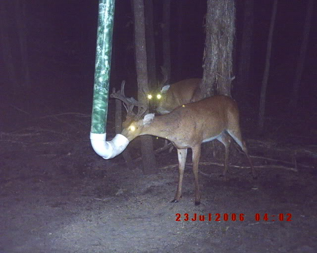How To Build A Wooden Deer Feeder Easy DIY Woodworking
