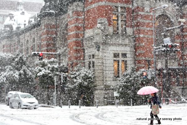 雪の横浜開講記念会館