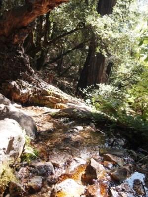 Indian creek PA125601