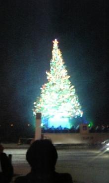 あるがままに生きる-函館クリスマスツリー