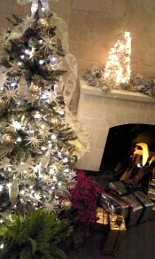 $「あるがままに生きる」-クリスマス