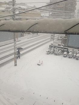 $「あるがままに生きる」-雪