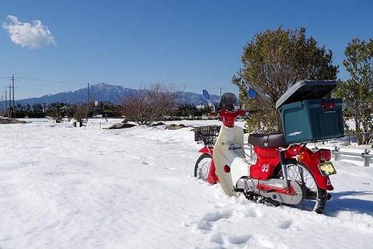 雪散歩 10
