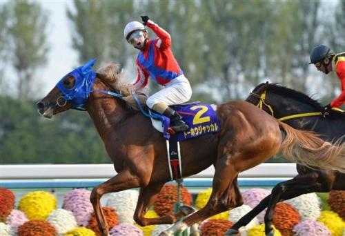 【競馬】菊花賞馬の方がダービー馬よりはるかに出世する件.jpg