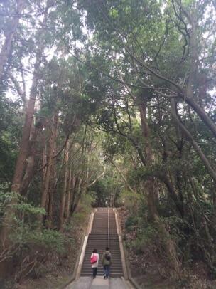 宗像大社 munakata