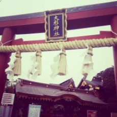 日本で唯一の夢むすび神社、大杉神社
