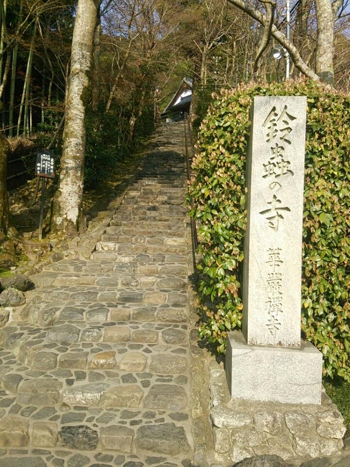 春の嵐山、鈴虫寺