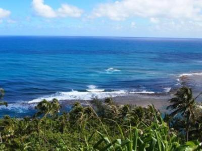 web kauai 20160624 P6246783