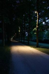 Allee_2979 (5)