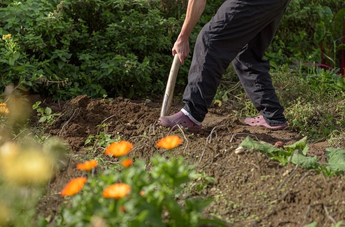 gardening-4545661_1280