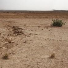 Von Marrakesch nach Ouazazarte - Landschaft um Ouazazarte