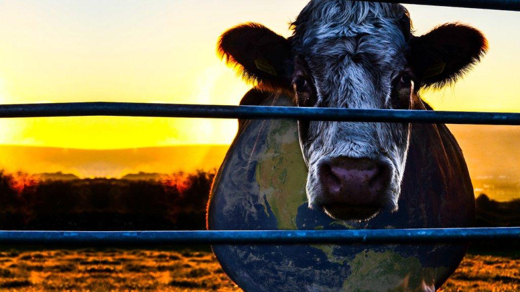 cowspiracy en iyi netflix belgesel
