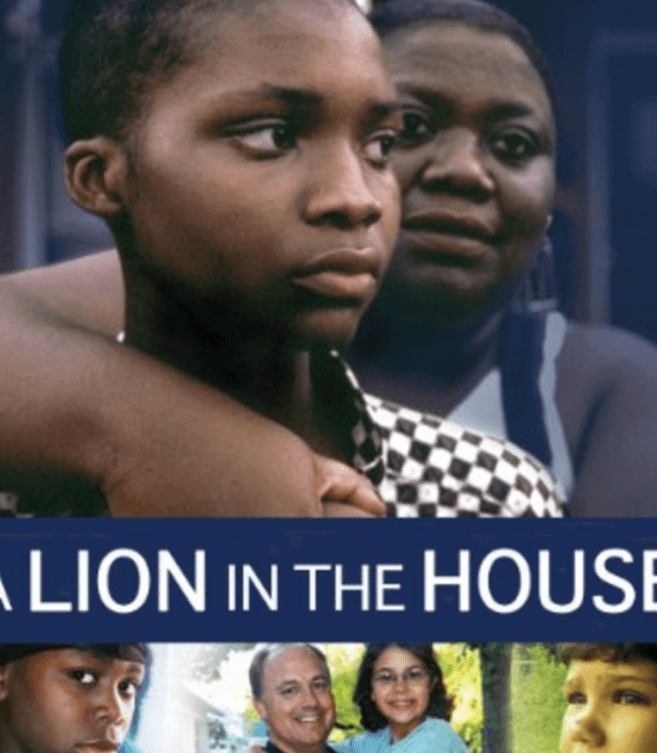 Evdeki Aslan Belgesel Dizi Konusu Yorumu ve İncelemesi- A Lion in the House