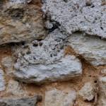 joints poreux en terre