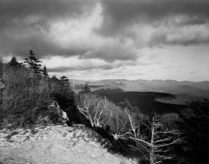 Winter clouds, spruce, summit of Wittenberg Mountain. Thomas Teich