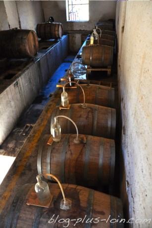 Dans une fabrique de Pisco, à Pisco Elqui.
