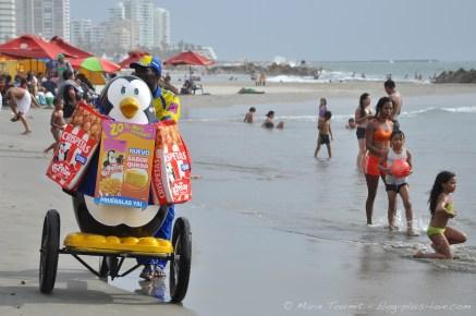 """Un pingouin """"marchand"""" sur la plage de Bocagrande."""