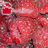 framboises fruits