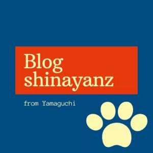 ブログしなやんzのロゴ
