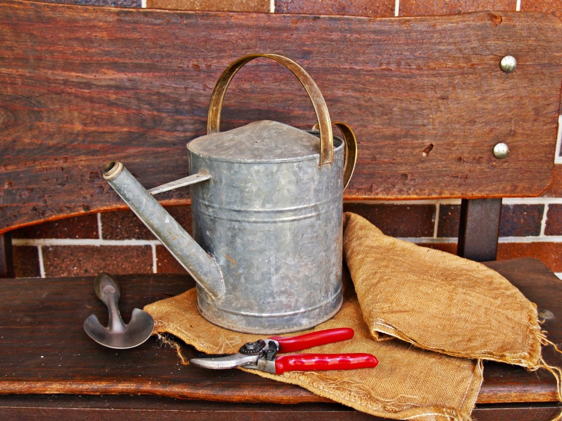 watering-can-1466491_1280(1)