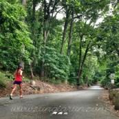 nature-runner