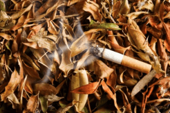 Tobacco is the main cause of fires in Europe