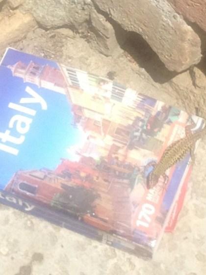 Reiseführer Italien, Lonely Planet