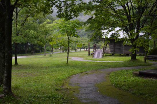 高知 キャンプ 雨