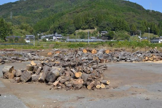 キャンプ 焚き火 薪 高知 日高