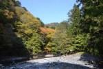 【高知で登山】紅葉ハイクで奥物部:白髪山に1泊2日で行ってきました!!その1日目^^