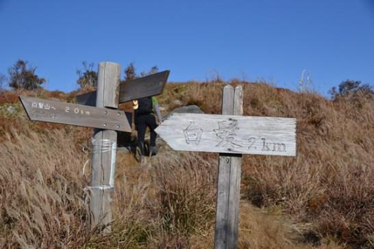 高知 物部 白髪山 三嶺 光石 登山 紅葉 ハイク キャンプ