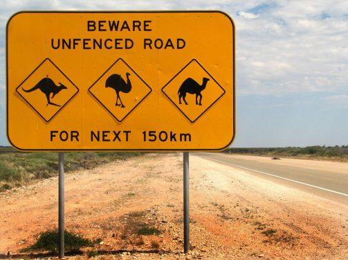 Beware Unfenced Road For Next 150km Road Sign - Kangaroo, Emu, Camel