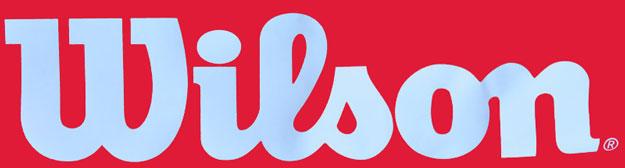 wilson sports company logo