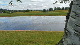 Golfing Water Hazard
