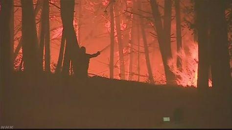 ポルトガルで山火事 24人死亡 車で避難し逃げ遅れる