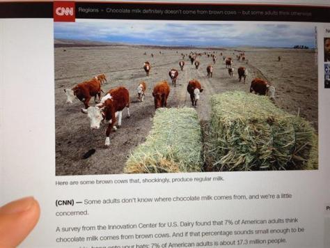 米国で、チョコレートミルクは茶色の牛から出てくるものだと思っている成人が全体の7%いたことが分かったニュースを伝える米CNNニュース(電子版6月16日付)