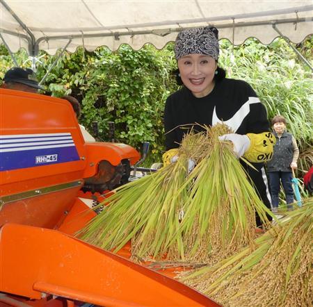 「小林幸子田」で収穫した稲の脱穀作業を行った小林幸子=新潟・長岡市