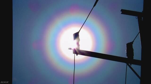 太陽の周りに虹の輪 正体は飛散した花粉か 千葉 | NHKニュース