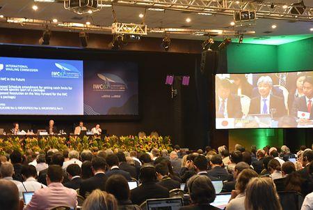 国際捕鯨委員会(IWC)総会=14日、ブラジル・フロリアノポリス