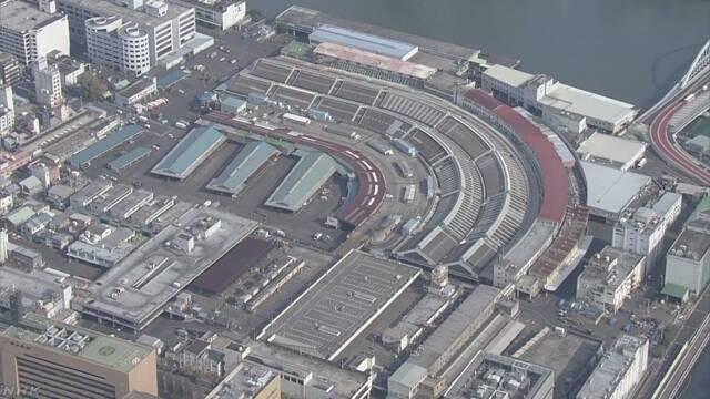 大量のネズミ 築地市場から拡散のおそれ 周辺地域は戦々恐々   NHKニュース