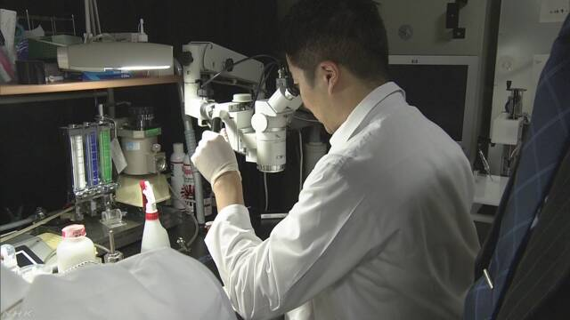 iPS細胞 脊髄損傷患者に応用 慶応大の臨床研究大筋で了承